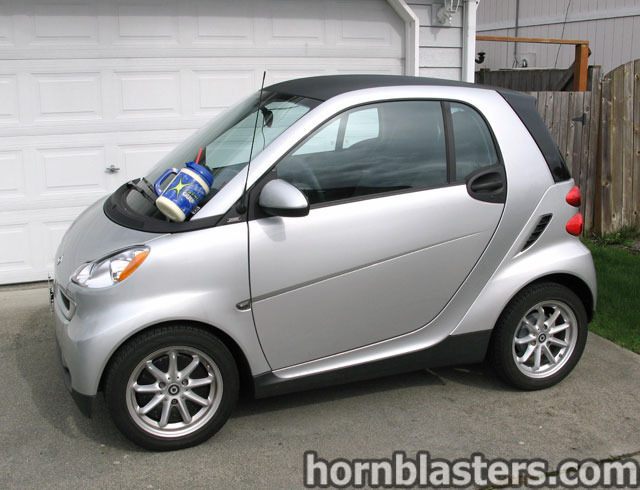 Ripcord's  Smart fortwo